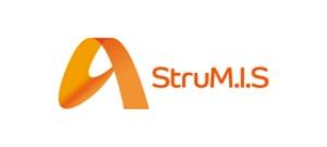 StruMIS300